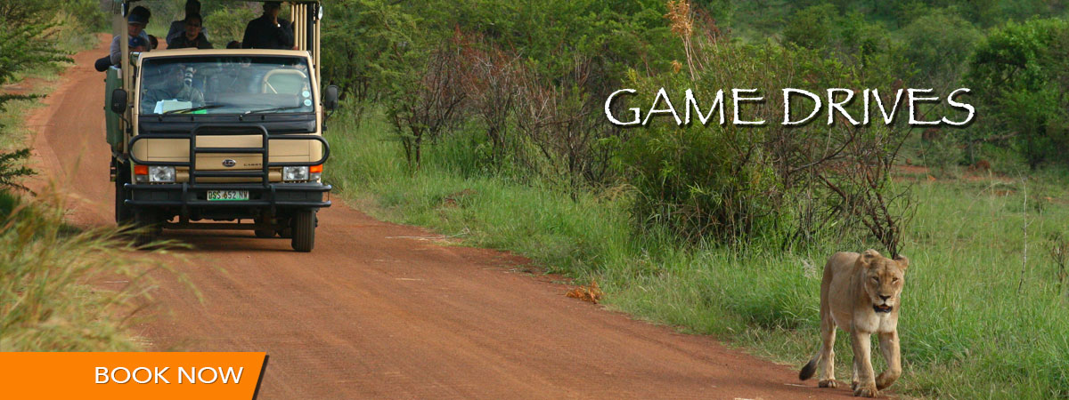 game_drives_mankwe_gametrackers-otp