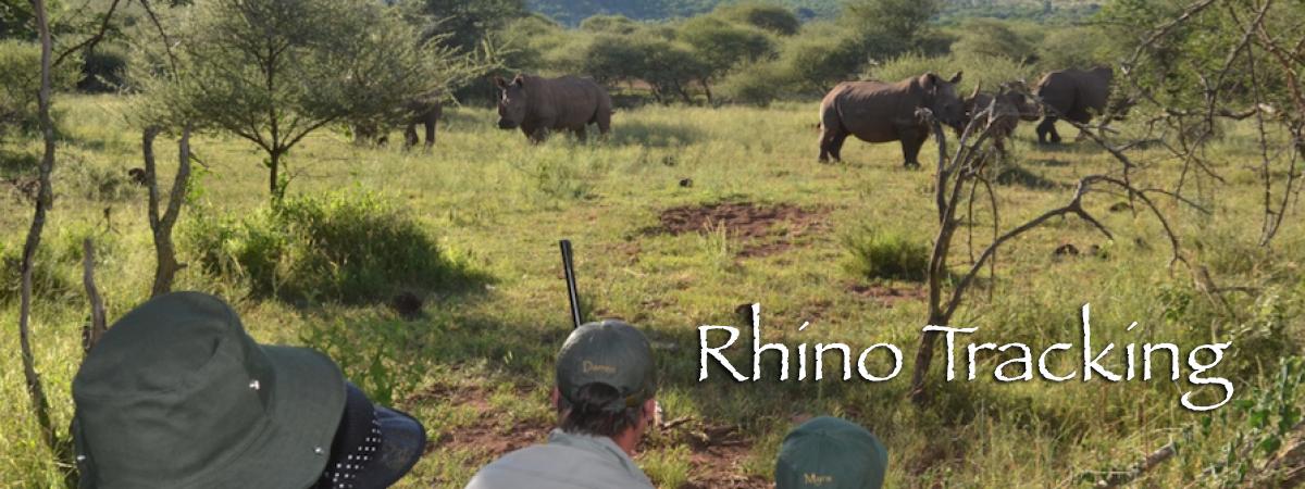 rhinoTracking