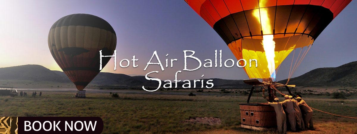 Balloon_Safaris_Mankwe_Gametrackers-Opt