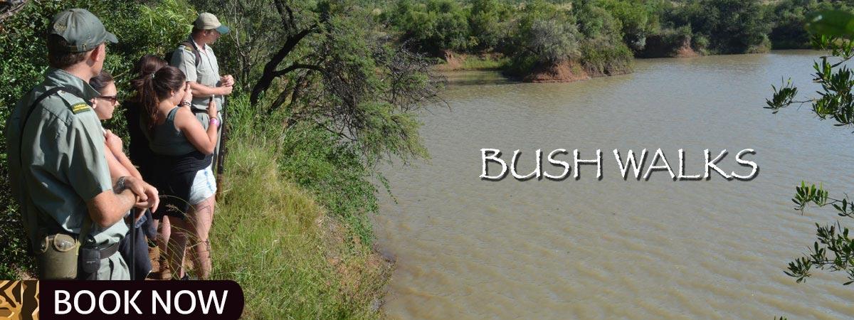 Bush_Walks_Mankwe_Gametrackers-Opt