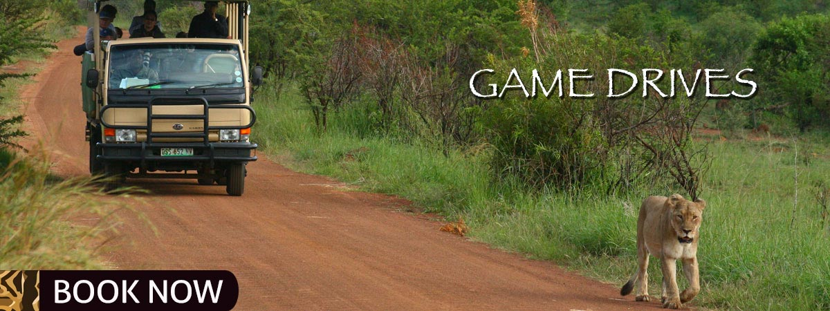 Game_Drives_Mankwe_Gametrackers-Otp-3
