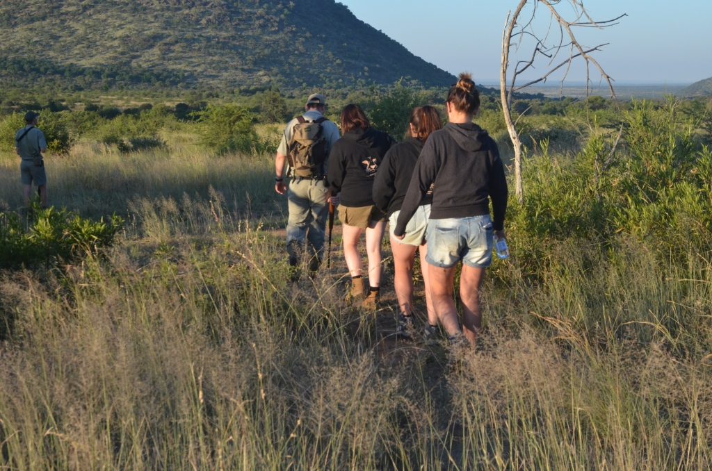 Bush Walks _Pilanesberg National Park