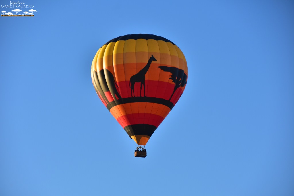 Hot-air-balloon-flight-Safari-In-the-Pilanesberg-National-Park-21