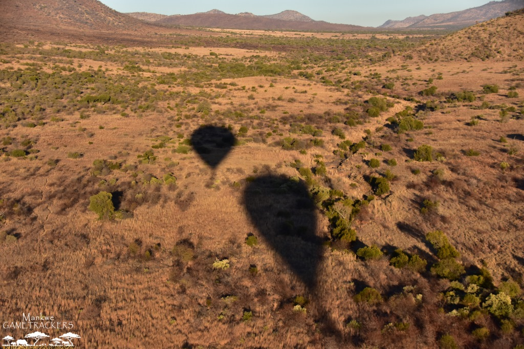 Hot-air-balloon-flight-Safari-In-the-Pilanesberg-National-Park-30