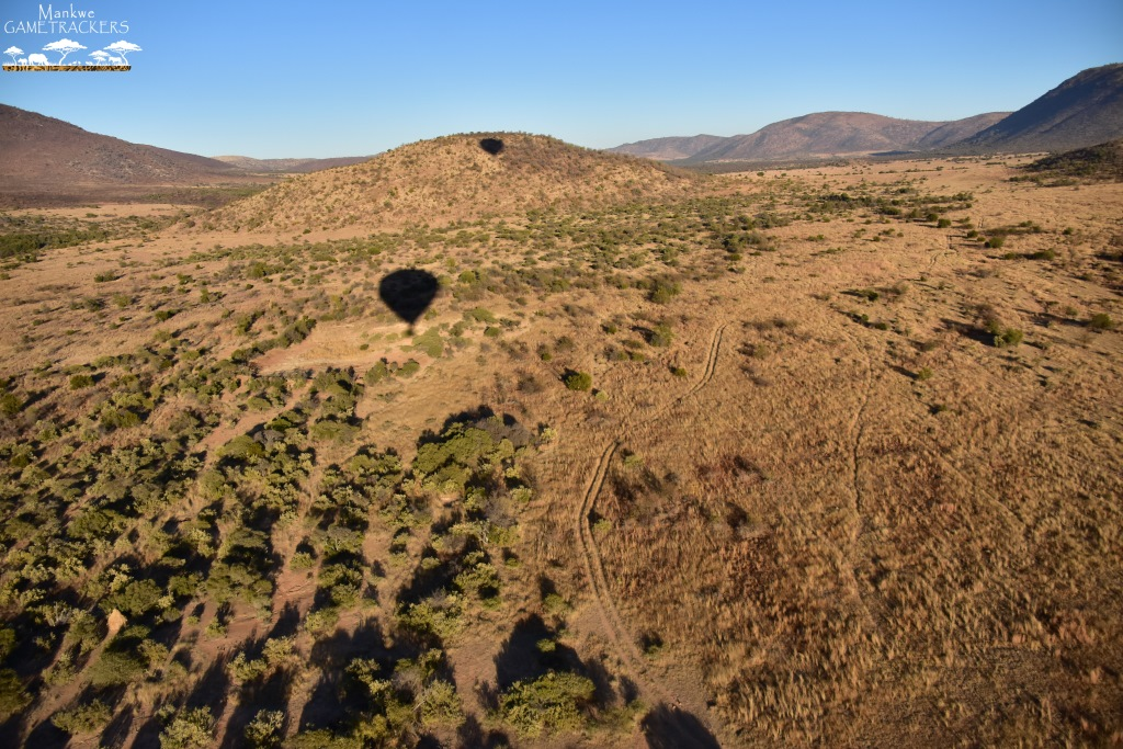 Hot-air-balloon-flight-Safari-In-the-Pilanesberg-National-Park-41