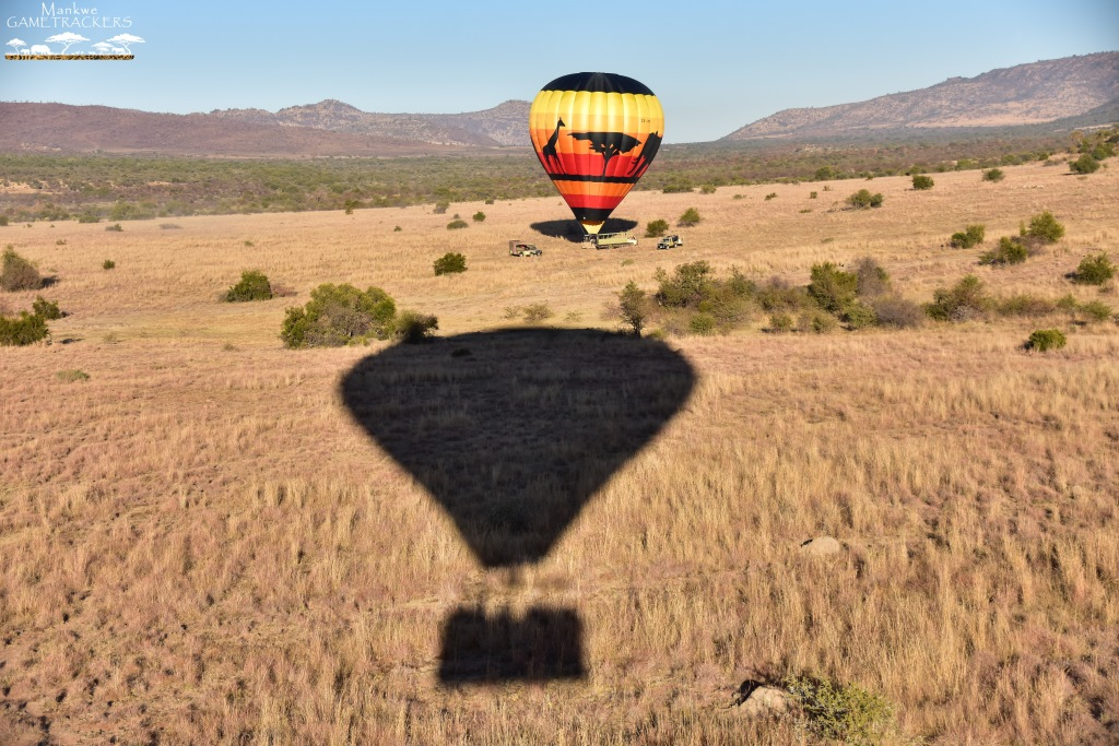 Hot-air-balloon-flight-Safari-In-the-Pilanesberg-National-Park-46