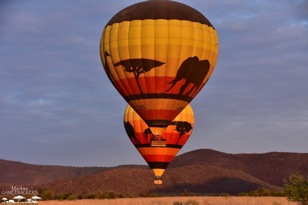 Hot air balloon flight/Safaris South Africa Mankwe Gametrackers _Pilanesberg National Park, North West South Africa