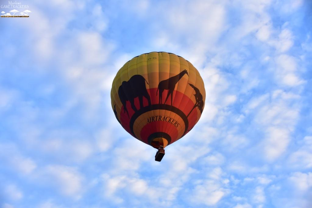 Hotairballoon flight/Safari South Africa Mankwe Gametrackers _Pilanesberg National Park, North West South Africa