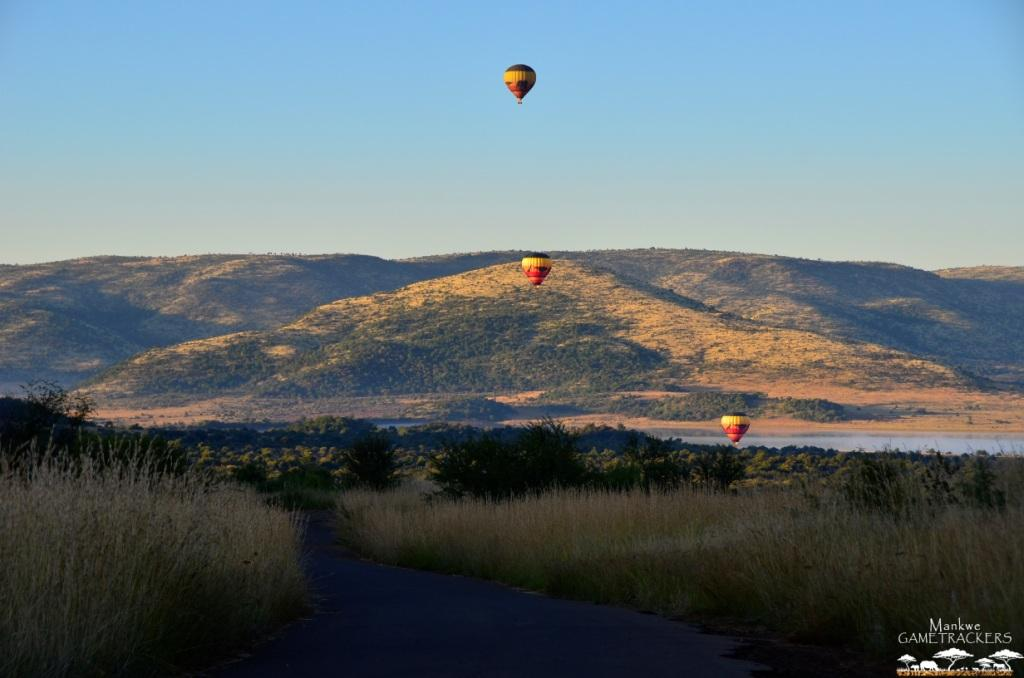 HotairBallooning-Mankwe