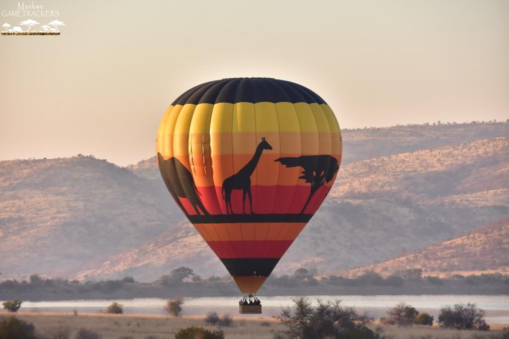 Mankwe GAMETRACKERS - Hot Air Balloon Safari